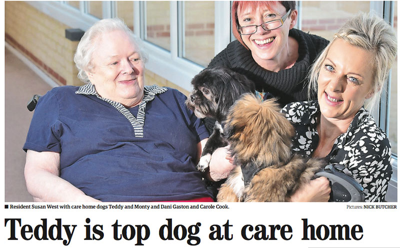 Teddy is top dog at care home