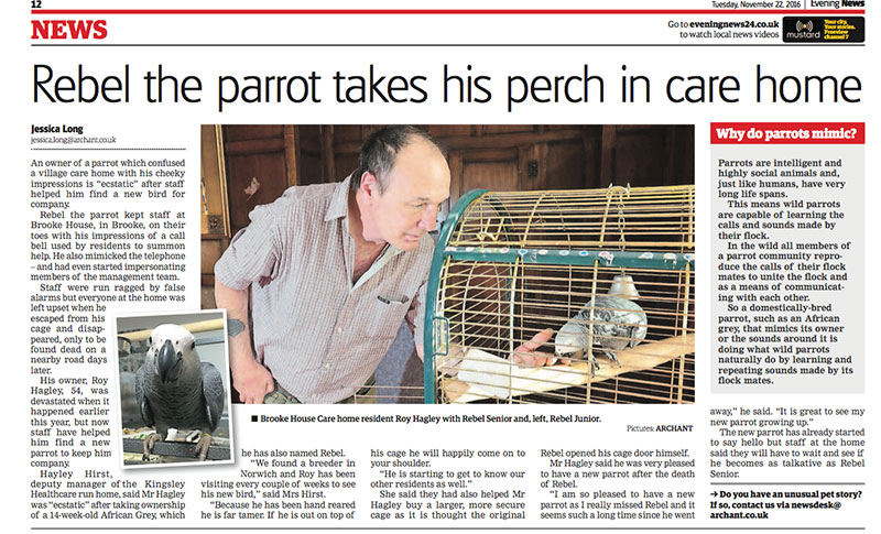 Rebel the parrot takes his perch in care home